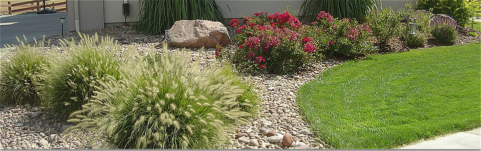 Xeriscaping, Planting, Plants, Design, Denver, Boulder Colorado on